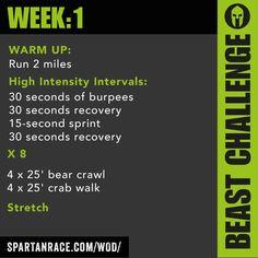Beast Mode Challenge: 1.1 - SPARTAN RACE™ Blog