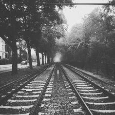 #mystic #dust #misty #rails #sticksandstones #trees #nature #directionunknown #direction #goinghome #ledzeppelin #goodmusicinmyears #listening #daytime #station #nothing #bw #thoughts #autumn #weather #photography #vegan #lowcarb #justforlikes #haha #gotcha by transluzenteskonfetti