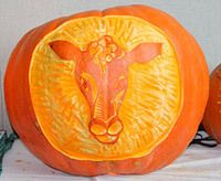 #Cow pumpkin carving idea from @craftfoxes.com - very cute! Bring on Halloween!