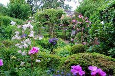 Volop zomer in de tuin van Loes en Rob Halsema Nijmegen