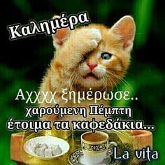 Good Night, Good Morning, Tomorrow Is Monday, Greek Quotes, Picture Quotes, Thankful, Messages, Life, Anastasia