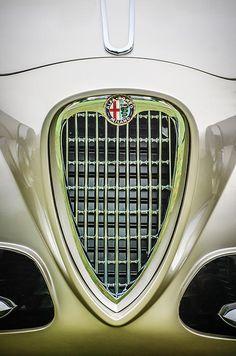 1955 Alfa Romeo 1900 Css Ghia Aigle Cabriolet Grille - Car photographs by Jill Reger
