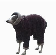 Dog Breeds Alphabetical Funny Gif #6871 - Funny Dog Gifs| Funny Gifs| Dog Gifs