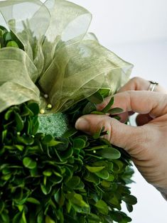 A Christmas tradition, the kissing ball, can be made out of more than just mistletoe. Use preserved boxwood sprigs, magnolia leaves or even fresh evergreens to create this holiday party decoration.
