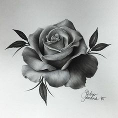 Incredible Realism Rose Art by @pedromedinaart <<< #rosetattoo #rose #tattoo #art #drawing #artist #pencil #igers #instadaily #cool #artwork #tattooing