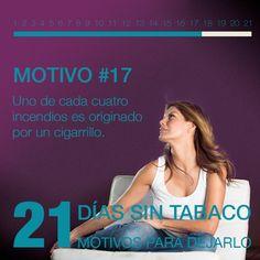 Motivo 17