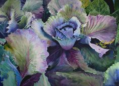 Red cabbage watercolour 57 x 77 cm © Elizabeth Tyler                      I've had a request asking me to show which colours I used in my...