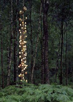 Новые инсталляции на природе