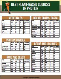 Where do vegetarians get protein?