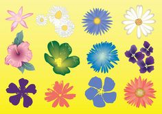 35 Best flower vectors images in 2015 | Flowers, Vector free