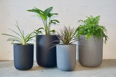 Mid-century Modern, Modern Living, Swift, Stuff To Do, Planter Pots, It Is Finished, Modern Planters, Indoor, Furniture