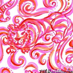 Check meowwwt #lilly5x5