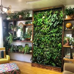 Vertical Gardens Are the Perfect Small Space Solution for Plant Lovers is part of Vertical garden wall - With a bare wall or fence you can easily grow plants, herbs, and vegetables Design Patio, Garden Design, Garden Wall Designs, Indoor Gardening Supplies, Vertical Garden Wall, Indoor Vertical Gardens, Wall Garden Indoor, Indoor Plant Wall, Plant Wall Diy