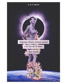 """Maira Elena Rosas compartió una publicación en Instagram: """"🌕Tomando toda la luz que trae la super Luna Llena 🌌 ------------------------------------------…"""" • Sigue su cuenta para ver 56 publicaciones. Movies, Movie Posters, Instagram, Art, Moonlight, Full Moon, Lights, Roses, Art Background"""