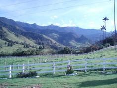 Valle del Cocora -  Coffee region - Colombia Mountains, Coffee, World, Travel, Colombia, Kaffee, Viajes, Traveling, The World