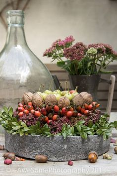 Boxwood, sedum, rose hips, walnuts, crabapples