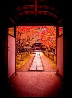 Kyoto, Japan - Visit Travel Den for amazing city breaks Japanese Landscape, Japanese Architecture, Beautiful World, Beautiful Places, Mont Fuji, L5r, Japanese Culture, Japan Travel, Land Scape