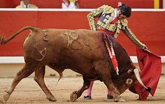 The saddest thing we ever witnessed!  cancun-bullfights.jpg 440×280 pixels