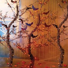 Standing over 5-ft tall, these spooky Halloween trees sparkle with 70 mini orange lights. Suitable for both indoor or outdoor use, the branches on this Halloween decoration make a cozy resting place for bats and crows.