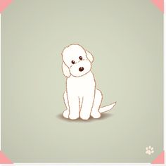 Labradoodle dog vector art illustration