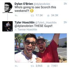 Dylan O´Brien and Tyler Hoechlin Teen Wolf Mtv, Teen Wolf Funny, Teen Wolf Memes, Teen Wolf Boys, Teen Wolf Dylan, Teen Wolf Cast, Tyler Hoechlin, Dylan O'brien, Sterek
