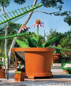 In the Plants are Alive gallery, large models demonstrate the inner working of plants and the functions of their different parts.
