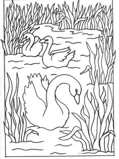 Realistic Swan Coloring Pages. Swan are birds known as aquatic animals, but most of their time is spent on land. Swan can be easily marked with a long neck and white fur. Swan has a. Bird Coloring Pages, Adult Coloring Pages, Printable Pictures, Nature Activities, Plant Drawing, Black N White Images, Mosaic Art, Doodle Art, Line Art