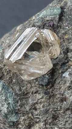Diamond in Kimberlite - - Udachnaya pipe - Russia Mineral Specimen Minerals And Gemstones, Rocks And Minerals, Diamond Wallpaper, Gold Money, My Gems, Rough Diamond, Diamond Design, Natural Diamonds, Stones And Crystals