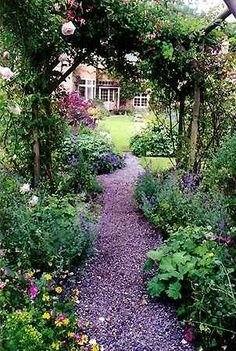 arbor, path, climbing roses, and more