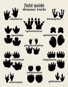 Dinosaur Tracks Poster, Field Guide Series