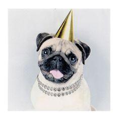 George Home Pug Napkins - ASDA Groceries Party Napkins, Asda, Pugs, Shopping, Design, Pug, Pug Dogs, Design Comics