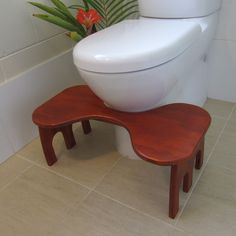 Toilet Stool in position