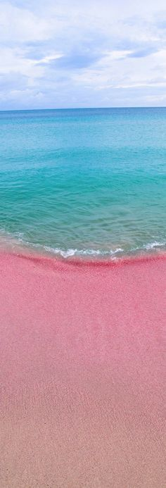 Sable rose d'une plage de #Barbuda, #Caraibes / Pink sandy beaches in Barbuda, #Caribbean