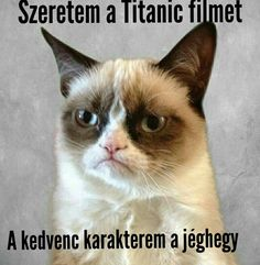 grumpy humor Cats are cute and sometimes unintentionally do stupid funny things, so we have collected some the funniest and most hilarious cat memes and pictures hope you will enjoy em. Memes Humor, Kid Memes, Funny Cat Memes, Funny Cats, Funny Animals, Cute Animals, Funny Animal Jokes, Grumpy Cat Quotes, Grumpy Cat Humor