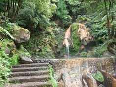Sao Miguel, near Furnas, Acores/we lived here for 2 years...these waters are hot:its a volcanic island