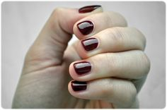 #manicure #mani #manioftheday #motd #nails #nailsoftheday #notd #paznokcie #naillacquer #nailpolish #lacquer #polish #nagellack #bordo #crimson #silcare
