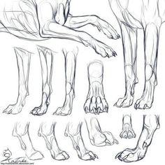 Resultado de imagem para dog anatomy drawing basic animal drawings Learn To Draw People - The Female Body Animal Sketches, Animal Drawings, Art Drawings, Drawing Animals, Dog Anatomy, Anatomy Drawing, Animal Anatomy, Body Drawing, Dog Paw Drawing