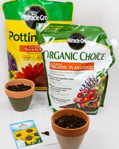Do Plants Grow Best In Chemical Fertilizer, Organic Fertilizer, Or No Fertilizer? | Education.com