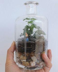 Mensajes en una botella... . . Me encantan los terrarios llenos de contenido (que no significa que estén llenos de elementos) y para San Valentín estoy preparando varios encargos de ese tipo míni mundos que estoy segura de que despertarán una sonrisa porque en todos hay un reflejo familiar y personal . . . . . . . . . #terrario #terrariums #minimundo #minigarden #botella #regalosoriginales #granada #plantas #plants #nature #naturelove #naturaleza #sanvalentin