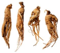 Ginseng: is increasingly being used as an energy booster, anti-inflammatory and antioxidant due to its saponin content and capacity to increase circulation and balance the system. In addition, it enhances sexual function in both men and women and slows down the aging process.