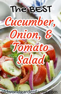 The BEST cucumber, onion and tomato salad. How to bring this classic dish to a whole new level that everyone can enjoy! Cucumber Tomato And Onion Salad Recipe, Cucumber Salad Vinegar, Tomato Salad Recipes, Cucumber Recipes, Healthy Salad Recipes, Veggie Recipes, Juicer Recipes, Fast Recipes, Marinated Cucumbers