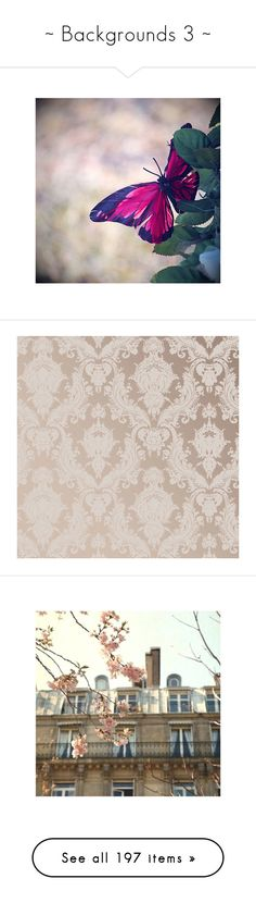 """""""~ Backgrounds 3 ~"""" by romantiquechic ❤ liked on Polyvore featuring backgrounds, butterflies, dragonflies, home, home decor, wallpaper, furniture, metallic textured wallpaper, vintage damask wallpaper and vintage pattern wallpaper"""