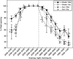Most Silene species possess either diurnal or nocturnal pollination syndromes. Prieto-Benítez et al. study a Silene species with mixed floral features to reveal the finely tuned relationships between flower responses such as petal opening nectar production and scent emission and overall pollination success as governed by complementary circadian rhythms.  Dynamic of flower opening and closure throughout the day (mean  s.e. of percentage petal opening) of plants subjected to four combinations…