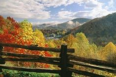 Welcoming Autumn to the Smoky Mountains: Autumn is the perfect season for taking a vacation in the Smokies because of the vibrantly colored leaves that shine on Smoky Mountain trees! The Great Smoky Mountains are a perfect place to gaze at the beauty of Fall. At the higher elevations, displays of color can begin as early as the middle of September.