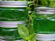Making mint jam is a fairly simple jam. Making mint jam is a fairly simple jam. Sangria Recipes, Jam Recipes, Easy Cake Recipes, Best Mojito Recipe Ever, Georgia Peach Drinks, Nutella, Marshmallow Vodka, Paloma Recipe, Best Summer Cocktails