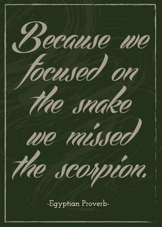 Because we focused on the snake we missed the scorpion.