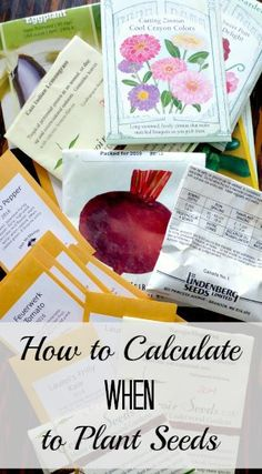 Growing Seedlings: How to Calculate When to Plant Seeds Do you know when to plant seeds? This simple method can help. - when-to-plant-seeds-for-vegetable-garden - Plants Garden Plants Vegetable, Garden Pests, Planting Shrubs, Planting Seeds, Gardening For Beginners, Gardening Tips, When To Plant Seeds, Growing Seedlings, Growing Veggies