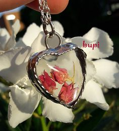 bupi / Keď láska kvitne :)