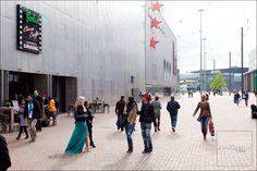 arena boulevard