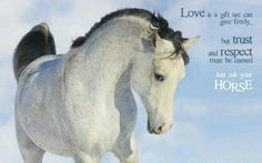 """Love is a gift we can give freely, but trust and respect must be earned. Just ask your horse."""